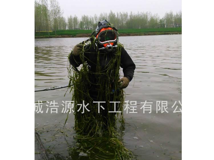 2016阜阳颍河中的潜水员