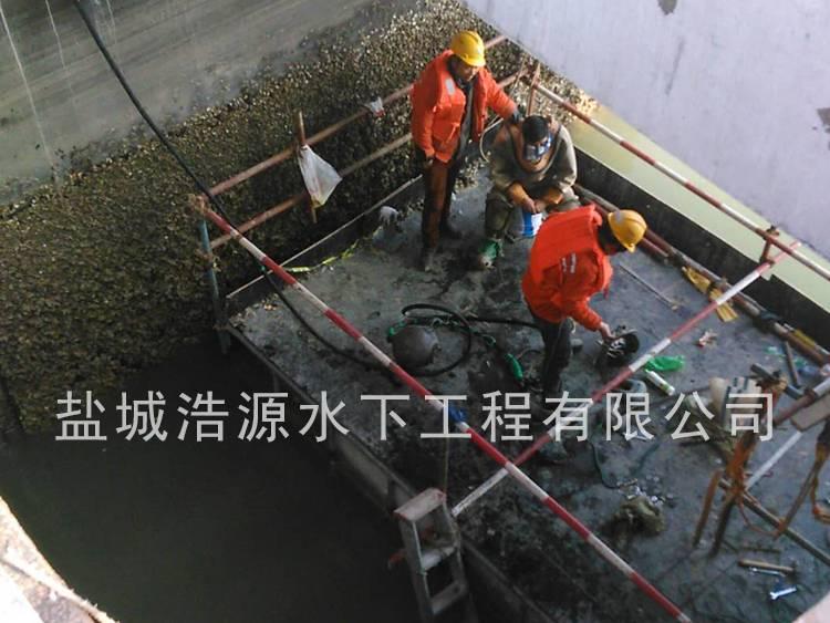 2015连云港核电站进水口铲海蛎子